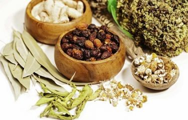 Learn About Traditional Medicine